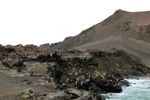 Galapagos115