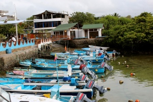 Galapagos150