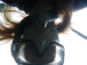 Galapagos6