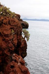 Galapagos61